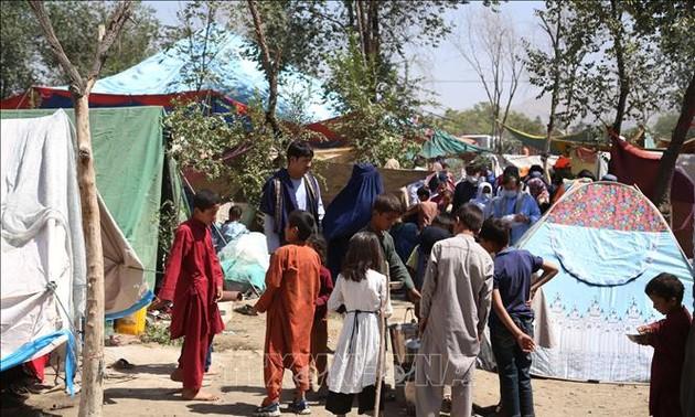 Cruz Roja llama a reanudar la asistencia humanitaria en Afganistán