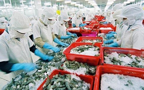 Ngành thủy sản khôi phục sản xuất sau dịch Covid 19