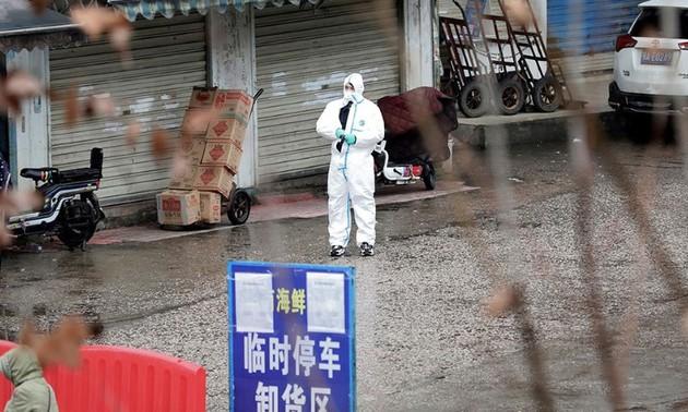 Chercheurs chinois: Le Covid-19 ne provient pas du marché de Huanan