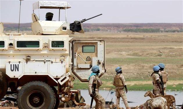 Le Conseil de sécurité de l'ONU condamne l'attaque contre des Casques bleus au Mali