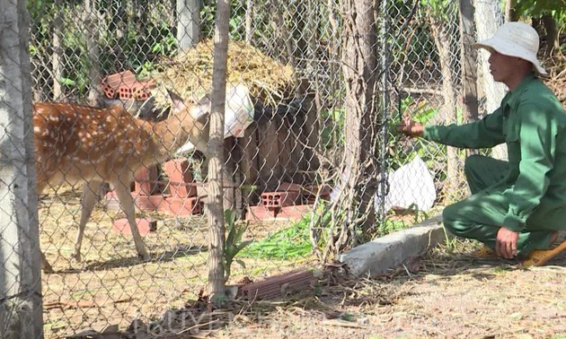 L'élevage des cerfs Sika, une reconversion réussie