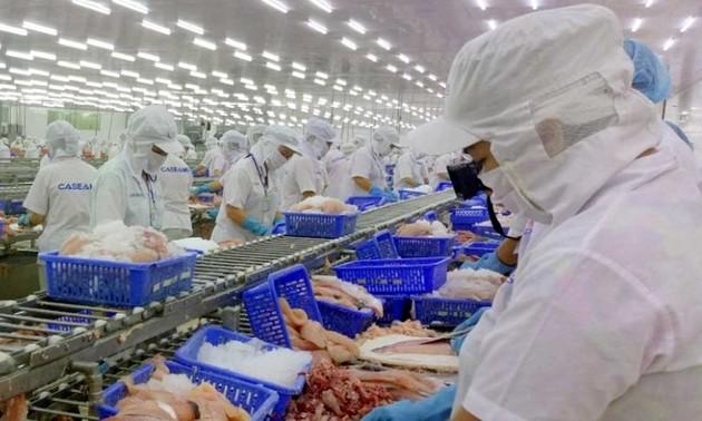 EVFTA: Les exportations vietnamiennes de produits aquatiques à destination de l'UE en essor