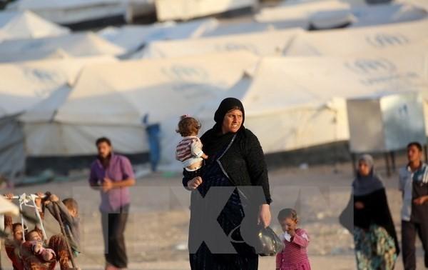 125 тысяч мирных иракских жителей потеряли свои дома в Мосуле