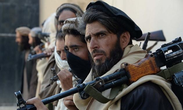 США и Талибан готовы провести переговоры по предотвращению кризиса в Афганистане