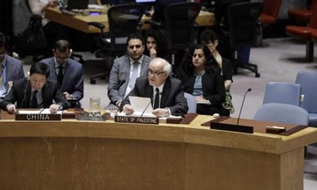 Палестина готовит международную конференцию по мирному урегулированию на Ближнем Востоке
