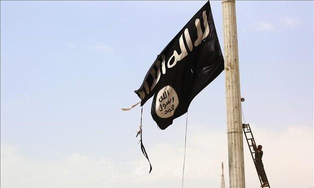 Стало известно о ликвидации одного из главарей «Аль-Каиды»