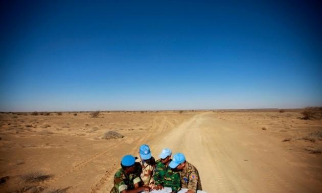 Вьетнам призвал стороны воздерживаться от любых действий, осложняющих ситуацию в Западной Сахаре