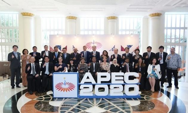 Hội nghị các quan chức cao cấp APEC lần thứ nhất (SOM 1)