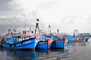 Membantu kaum nelayan menggalang kapal berkulit baja untuk mengarungi lautan luas