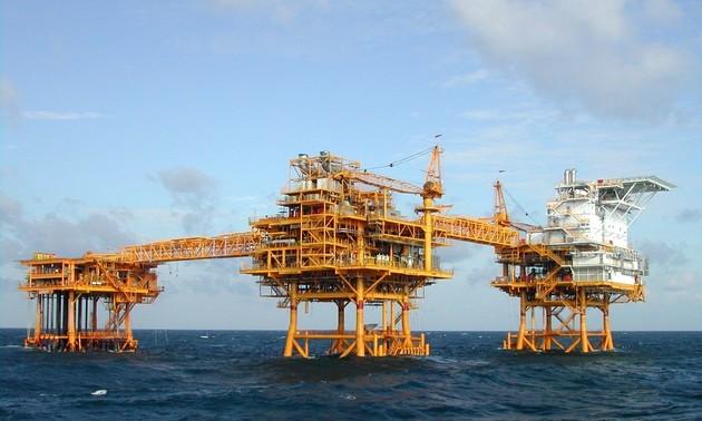 О работе по разведке и добыче нефти и газа на континентальном шельфе Вьетнама