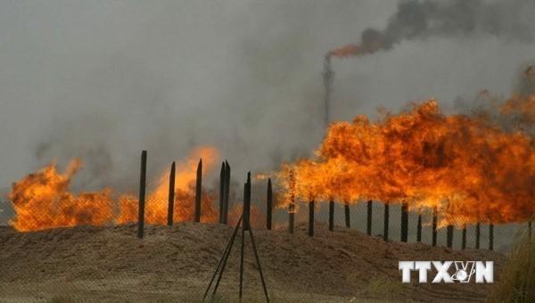 Иракские курды договорились с правительством по продаже нефти