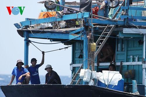 Ngư dân kiên cường bám biển bất chấp sự ngăn cản của tàu Trung Quốc