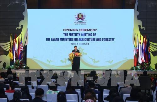 Khai mạc hội nghị Bộ trưởng Nông lâm nghiệp ASEAN lần thứ 40 (AMAF 40)