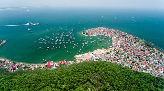 Nghiên cứu mô hình không gian hệ sinh thái đô thị biển