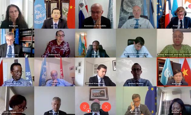 Việt Nam tham dự phiên họp của Hội đồng bảo an Liên hợp quốc về tình hình tại CH Trung Phi