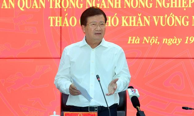 Phó Thủ tướng Trịnh Đình Dũng: Giải ngân vốn đầu tư công nhanh nhưng phải chất lượng, hiệu quả