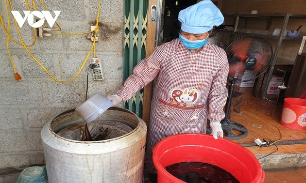 Cây thạch đen góp phần xóa đói giảm nghèo cho nông dân Cao Bằng
