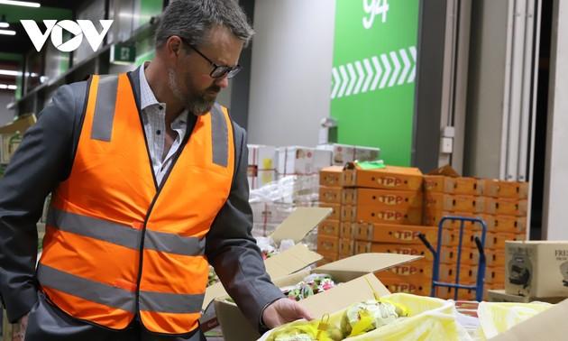 Thị trường Australia mong chờ nhãn tươi Việt Nam