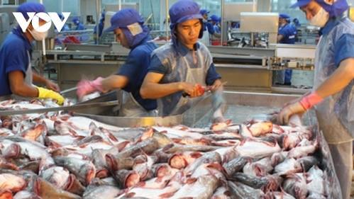 มูลค่าการส่งออกสัตว์น้ำของเวียดนามในเดือนพฤษภาคมพิ่มขึ้นร้อยละ 26