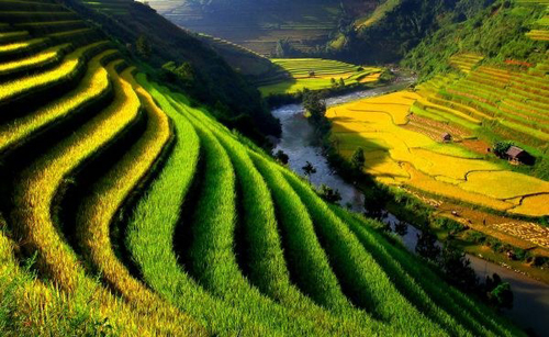 DISCOVERY VIETNAM