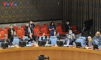Vietnam Imbau Semua Pihak di Yaman agar Hentikan Tindakan-Tindakan Permusuhan