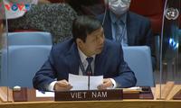 Vietnam reiteró su apoyo a una solución política integral en Libia