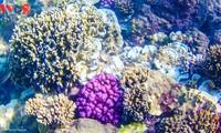 Der Wasserstrudel Yen – Ein Naturwunder