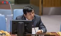 Вьетнам призвал найти всесторонний подход к преодолению вызовов в Мали