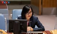 Vietnam ruft die betreffenden Parteien zur Lösung des Zwischenfalls des Öltankers Safer vor der Küste Jemens auf