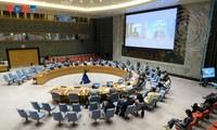 Vietnam Imbau Peningkatan Penanganan Tantangan di Kawasan Afrika Barat dan Sahel