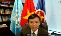 越南呼吁海地各方加强对话 寻求全面解决方案