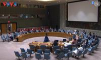 联合国安理会就戈兰高地形势和马里问题召开会议