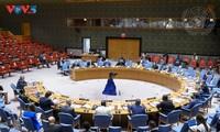 Việt Nam nhấn mạnh việc cần tôn trọng và thực thi đầy đủ Công ước Cấm Vũ khí hoá học