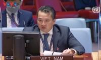 Việt Nam đề cao hoà giải, chấm dứt bạo lực tại CHDC Congo