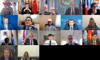 Vietnam llama a una ejecución plena del acuerdo del alto el fuego permanente en Libia