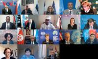 Vietnam preside conferencias virtuales del Consejo de Seguridad de la ONU sobre armas químicas y Malí