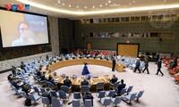 Le Conseil de sécurité de l'ONU discute de la situation au Yémen et en Haïti