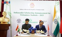 Indian institutes offer 113 scholarships for Vietnamese students
