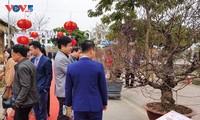 Fest der Pfirsichblüte Nhat Tan 2021