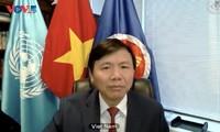 Conseil de sécurité : le Vietnam salue les évolutions positives en Irak