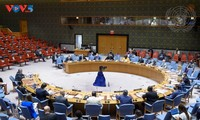 Le Vietnam prône le respect de la Convention sur l'interdiction des armes chimiques