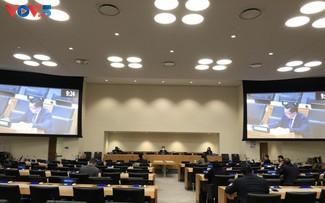 越南将积极、广泛参与联合国维和行动