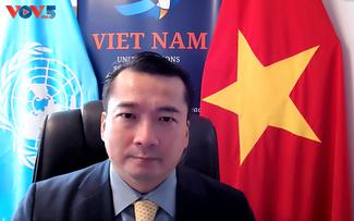 Вьетнам: незаконная торговля стрелковым оружием и легкими вооружениями наносит ущерб международному миру и безопасности.
