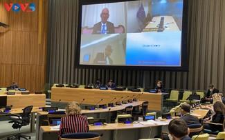 Việt Nam kêu gọi các bên kiềm chế mọi hành động làm phức tạp tình hình tại Somalia