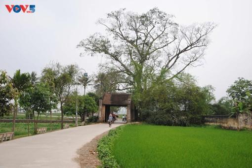 Memperingati 15 Tahun Desa Kuno Duong Lam Mendapat Pengakuan sebagai Situs Peninggalan Sejarah Nasional