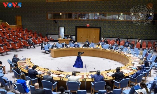 越南强调尊重和全面执行《禁止化学武器公约》的必要性