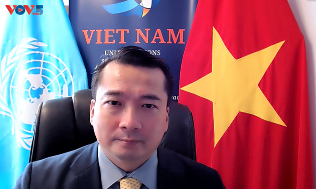 Illegal trade of small guns, light weapons affects int'l peace, security: Vietnamese ambassador