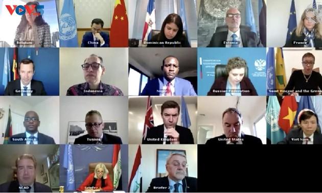 Вьетнам поддерживает активную роль Миссии ООН по оказанию содействия Ираку
