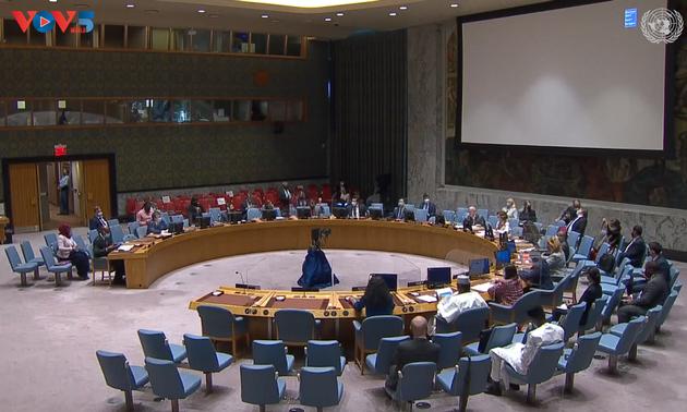 คณะมนตรีความมั่นคงแห่งสหประชาชาติประชุมเกี่ยวกับสถานการณ์ในประเทศซูดาน โซมาเลีย มาลีและเขตที่ราบสูงโกลัน