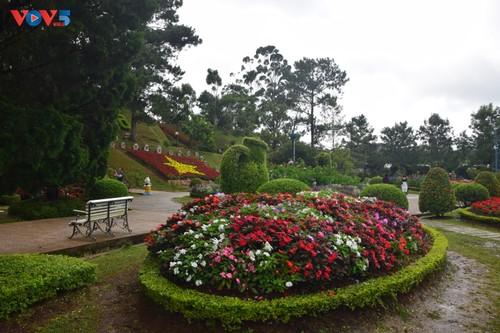 Zoom sur Dà Lat, capitale agricole du Vietnam - ảnh 1